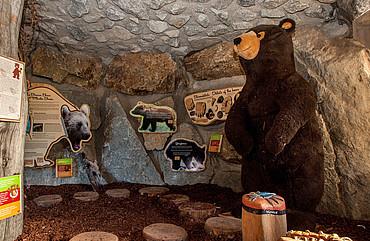 Wolfshöhle am Wolfsee