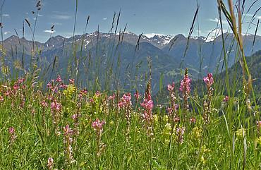 Bergpanorama Serfaus-Fiss-Ladis